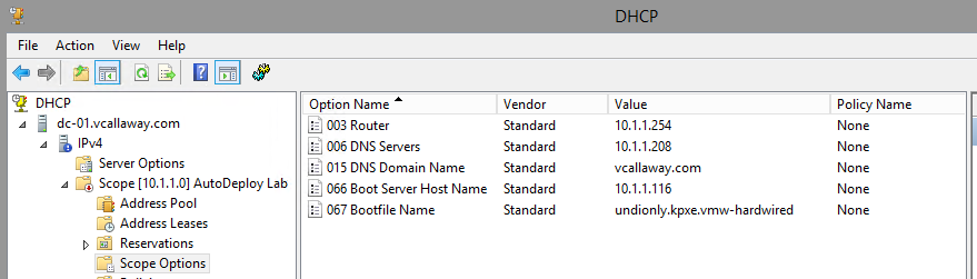 dhcp-options